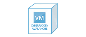 CyberFlood/Avalanche Virtual